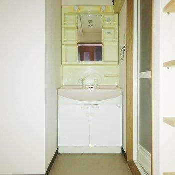 独立洗面台の洗い場が深めで嬉しい!※フラッシュを使用しています