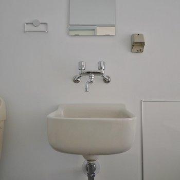 洗面台も個性的でしょ♪※写真は同タイプの別室