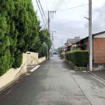通りは静かで、ゆったりとした生活を送れそう
