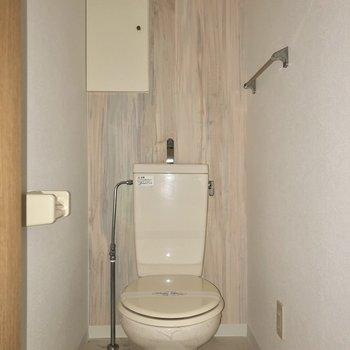トイレには嬉しい収納付きです※写真は通電前・フラッシュを使用して撮影しています