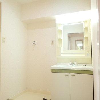 洗面室は扉がないのでカーテンなどで仕切ってみましょう!