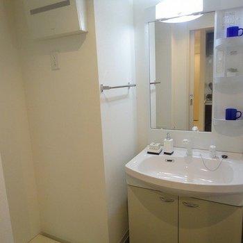 独立洗面台※写真は1階の同間取り別部屋のものです