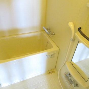 お風呂はスタンダードタイプ。