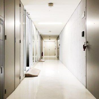 【共有廊下】スッキリ、清潔感◯