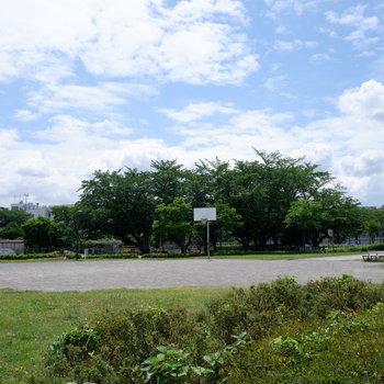 【おまけ】ベランダから見えた公園。キャッチボールも、バスケもできますよ。