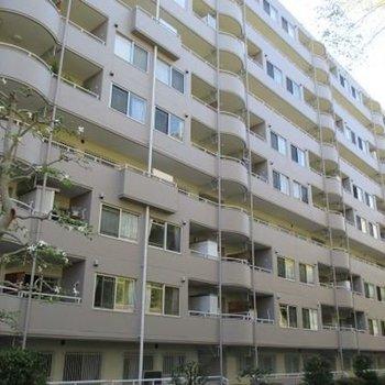 鎌倉グリーンマンション 710号室