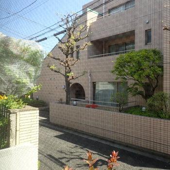 眺望は裏の通りと住宅です。