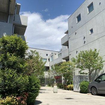 緑とコンクリートの建物がこれまたおしゃれ