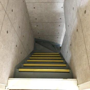 なんと、下にお部屋が!地下室みたいでドキドキ…!