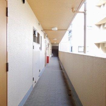 廊下もこんなに綺麗!