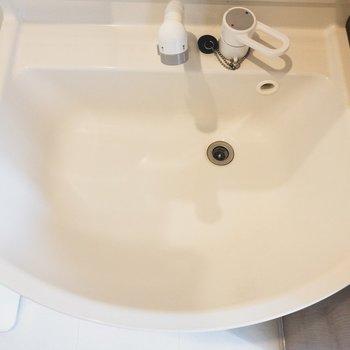 洗面台も大きく手入れがしやすい!