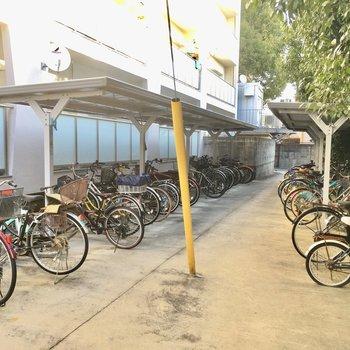 自転車置場!建物には直接つながってないのでちょっとめんどくさい。