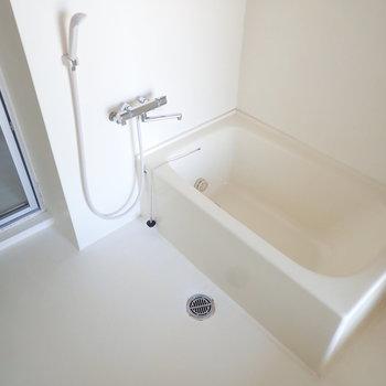バスルームはスペースが広く取られています。