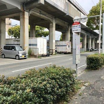 目の前は九州新幹線の高架下。車の通りはけっこう多いんです。