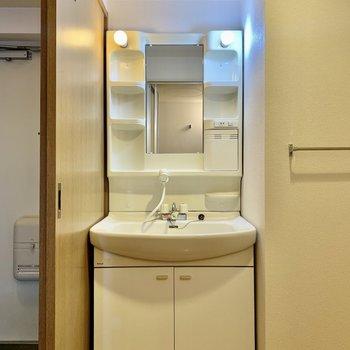 洗面台。シャワータイプの蛇口も使えます。