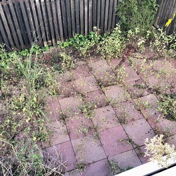 お庭の手入れはしっかりしましょう!(※写真は同タイプ別部屋、清掃前のものです)