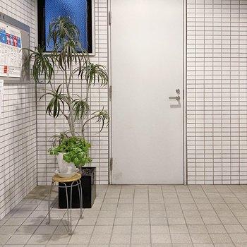 植物もかわいいエントランスは広々としていて、荷物の出し入れも余裕そうですね。