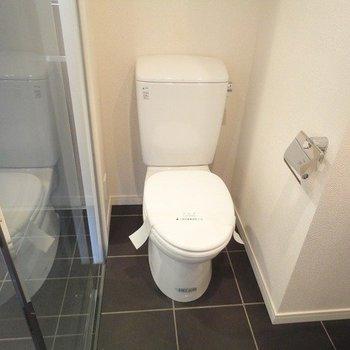 玄関から見えているトイレ ※写真は同階の同間取り別部屋のものです