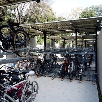 休日にはサイクリングで爽やかな空気を味わえます。