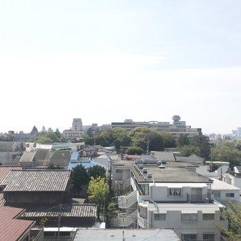 ここ本当に東京?って思っちゃう景色