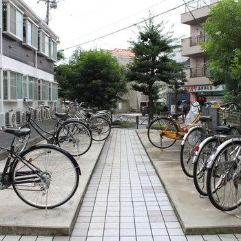 広々自転車置き場。