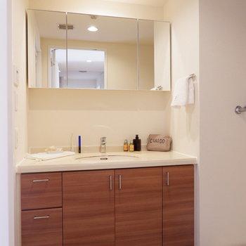 洗面台は収納力がハンパじゃない…!※家具はサンプルです