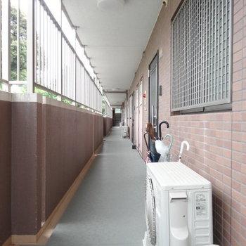 共用廊下もキレイ!ファミリーがたくさん住んでいそうでした。