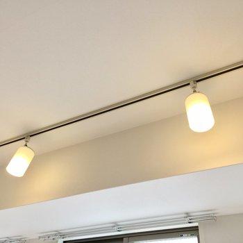 お部屋を照らすのはこのスポットライト。