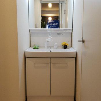 鏡の後ろは収納です♪※写真は3階の同間取り別部屋のものです