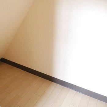 実は、階段下が収納になっている!