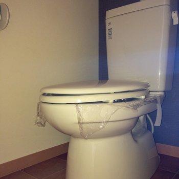 トイレは個室で嬉しい ※写真は通電前のものです