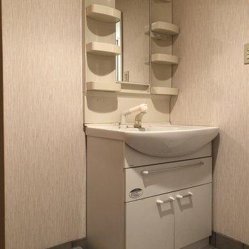 洗面台の横に洗濯機を(※写真は清掃前のものです)