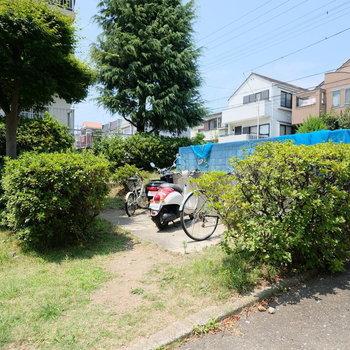 自転車置き場にもグリーンが!癒やされます。※写真は前回募集時のものです