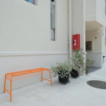 建物前にも植物やベンチを置いてありました。和みます◎※写真は前回募集時のものです