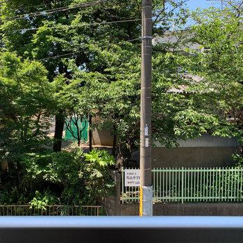 眺望は、向かいの中学校です。