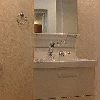 洗面台は収納もしっかりあるタイプ。※写真は2階の同間取り別部屋のものです