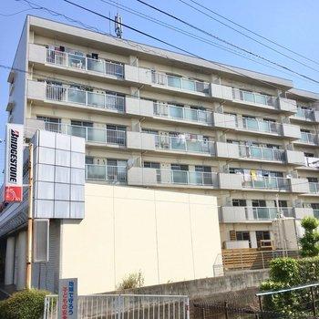 大通り沿いにある、ドシッと大きなマンション。