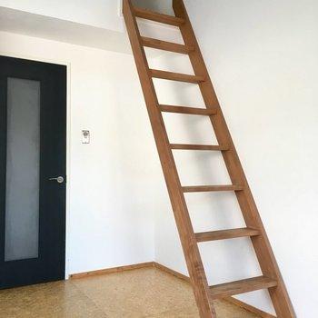 階段もしっかりしているので、登りやすい!