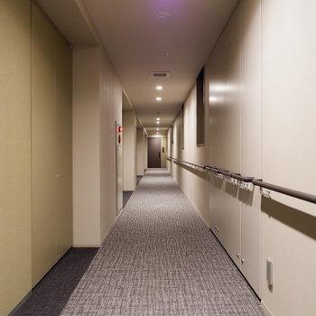 歩きやすい廊下をてくてく。