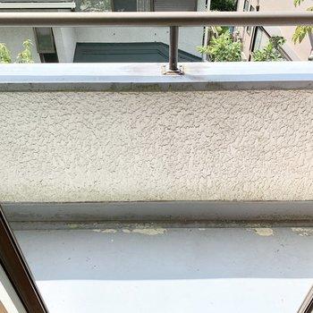 2階和室バルコニー は小さめで物干しかけはありません。