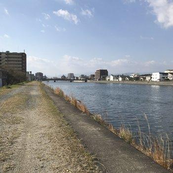 晴れた日は宇美川の土手を散歩でも♬