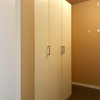 玄関にある収納部屋とでもいうのでしょうか。ここ、広い。