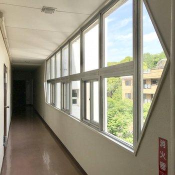 玄関前の珍しい形の窓が可愛いんです。