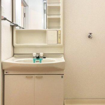 洗面台にはポケット収納が充実。
