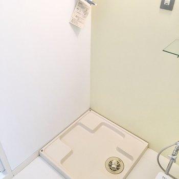 洗濯パンはトイレ横に。