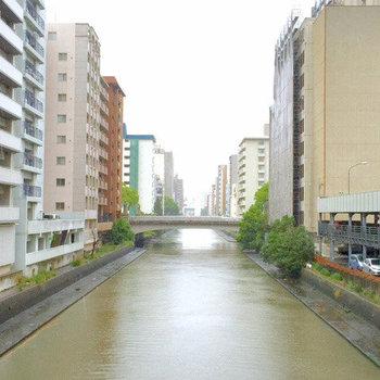 マンション裏には川が流れています