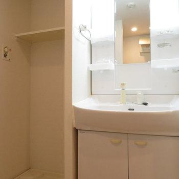 洗面台の隣は洗濯機置き場が