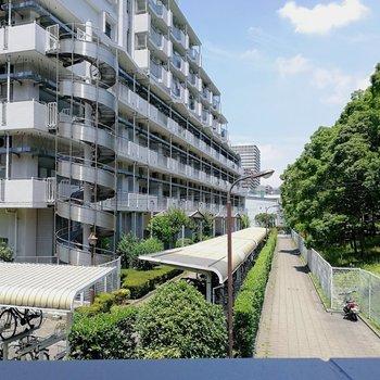 ベランダからはご近所のマンションと、公園の緑がいい塩梅に見えます。