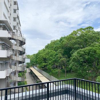 ルーバルからの眺望はマンションと平和の森公園