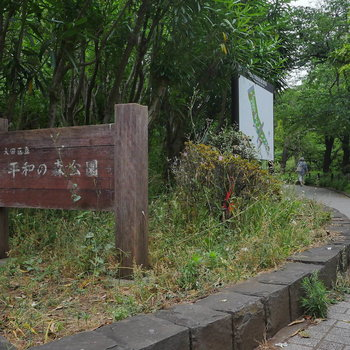 こんなに近くに公園があります。